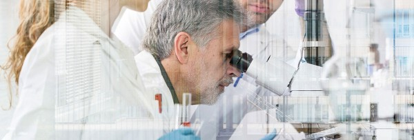 DRUG DISCOVERY & DRUG DESIGN PROGRAM